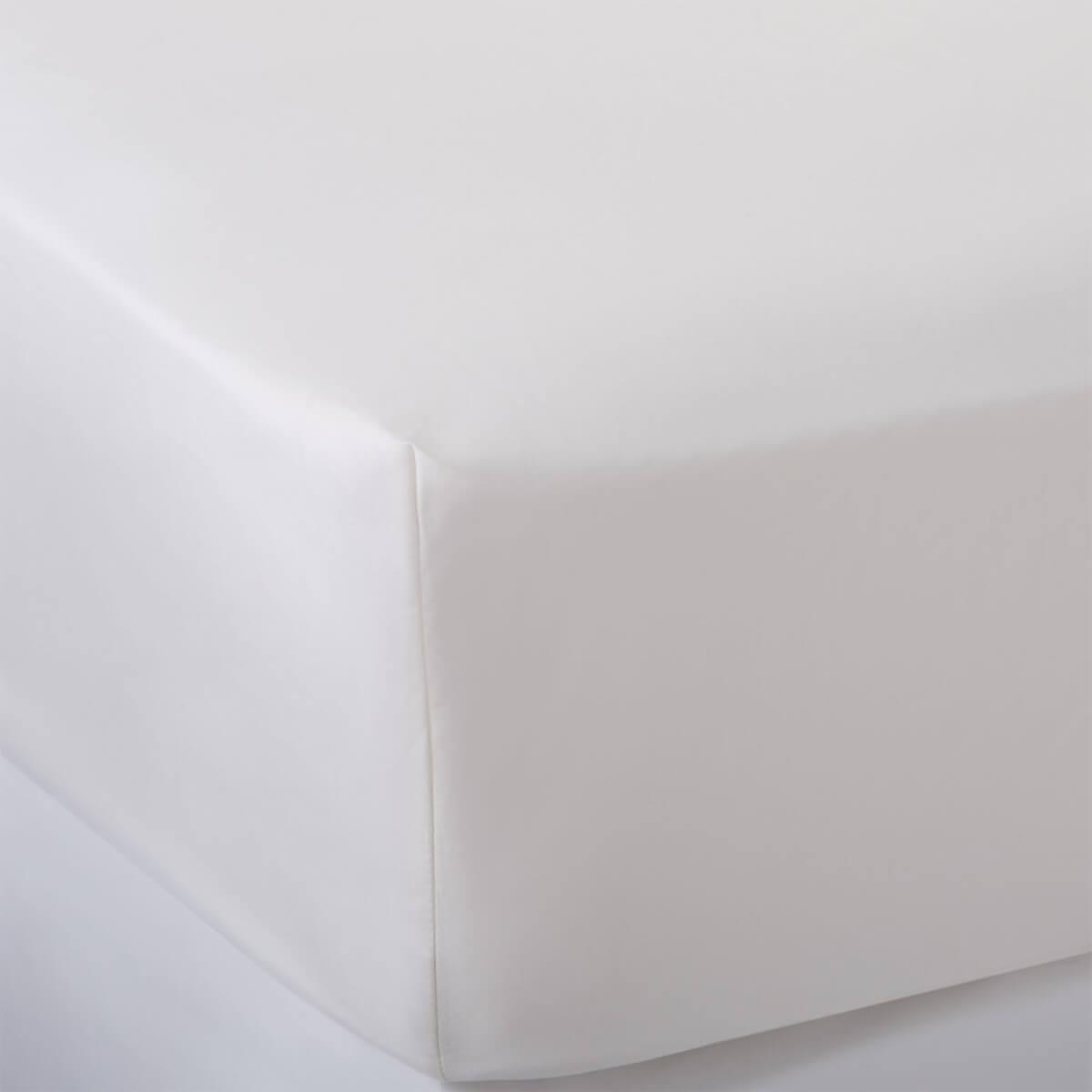 Luxury 600TC Egyptian Cotton - Double Flat Sheet - Ivory