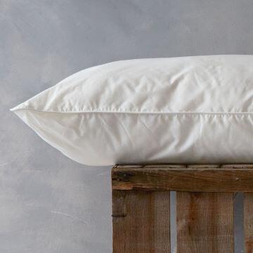 Cotton Standard Pillow - Medium/Firm