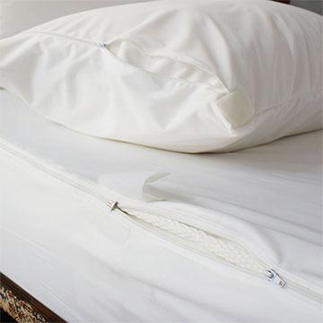 Anti Bed Bug King Size Mattress Encasement