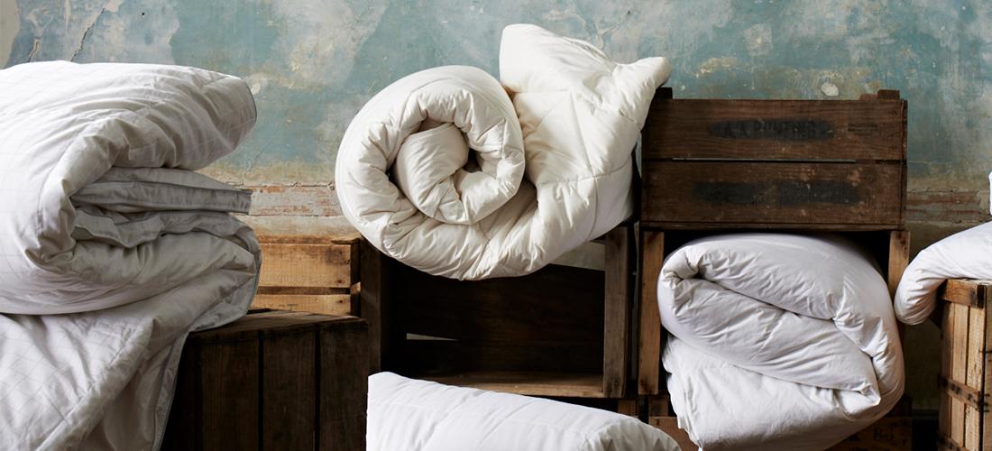 Launching our New Premium Eiderdown Duvet I Soak&Sleep